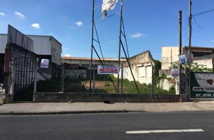 Terreno para Alugar, Vila Ana Maria