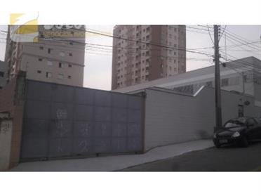 Galpão / Salão para Alugar, Olímpico