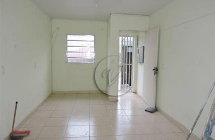 Apartamento para Alugar, Jardim Marek