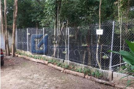 Terreno para Venda, Jardim Tupã