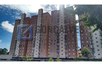 Apartamento para Alugar, Jardim Palermo