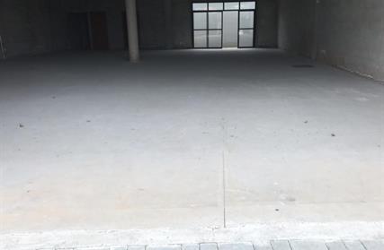 Sala Comercial para Alugar, Jardim São Caetano