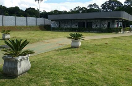 Chácara / Sítio para Venda, Palmeiras