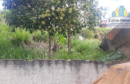Terreno para Venda, Jardim Silvana