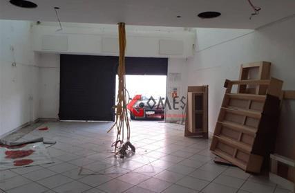 Galpão / Salão para Alugar, Vila Euclides