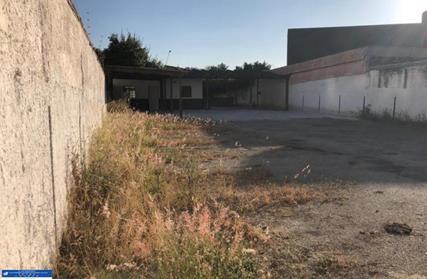 Terreno para Alugar, Santa Teresinha