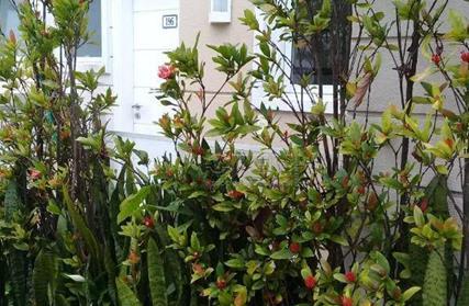 Condomínio Fechado para Venda, Jardim Vera Cruz