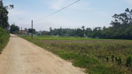 Terreno para Venda, Suíssa