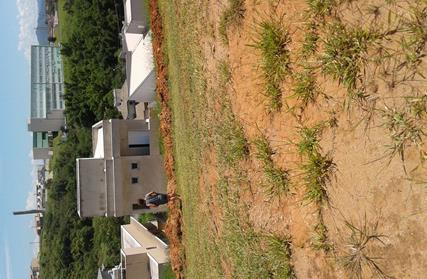 Terreno para Venda, Vila Floresta