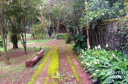 Chácara / Sítio para Venda, Jardim Clube de Campo
