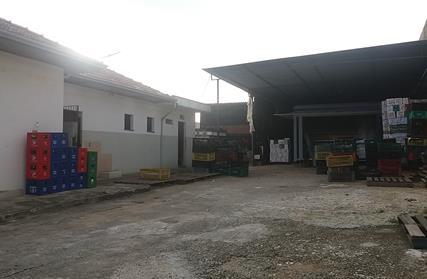 Terreno para Venda, Vila Francisco Matarazzo