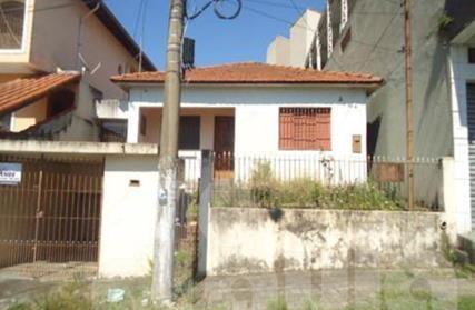 Terreno para Venda, Vila Lucinda