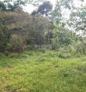 Terreno para Venda, Centro de Ubatuba
