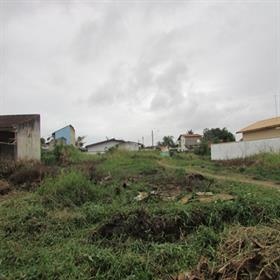 Terreno para Venda, Jardim Edel