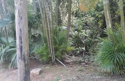 Terreno para Venda, Centro de Ilhabela