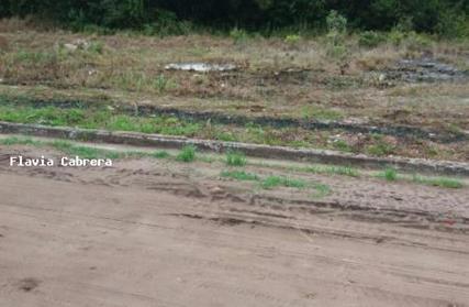 Terreno para Venda, Jardim das Palmeiras