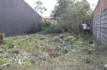 Terreno para Venda, Jardim Praia Grande
