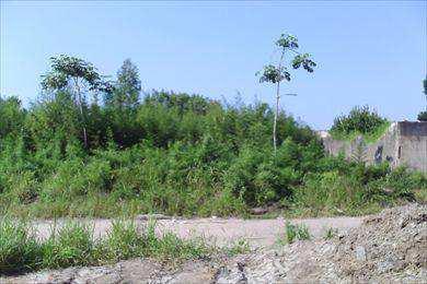 Terreno para Venda, Jardim Umuarama