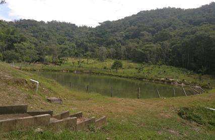Chácara / Sítio para Venda, Barra do Ribeira