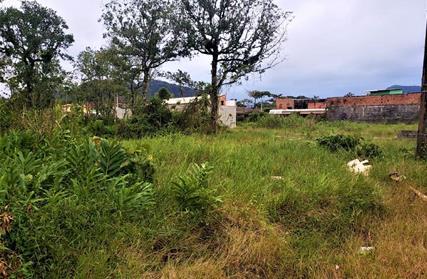 Terreno para Venda, Santa Eugênia