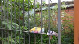 Terreno para Alugar, Jardim Anália Franco