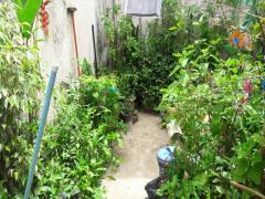 Sobrado / Casa para Venda, Maranhão