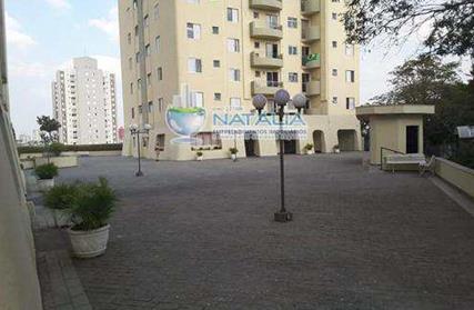 Apartamento para Alugar, Vila Londrina