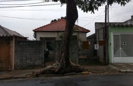 Terreno para Venda, Cidade Patriarca