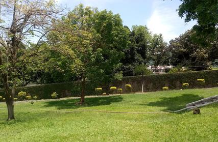 Chácara / Sítio para Venda, Parque Central (ZL)