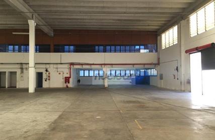 Galpão / Salão para Alugar, Parque São Lourenço