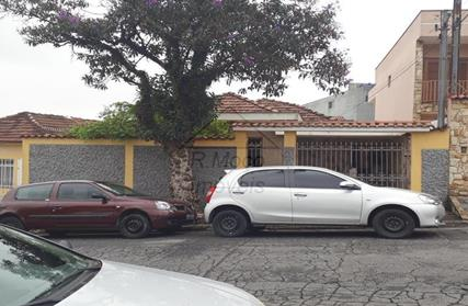 Terreno para Venda, Vila Guilhermina