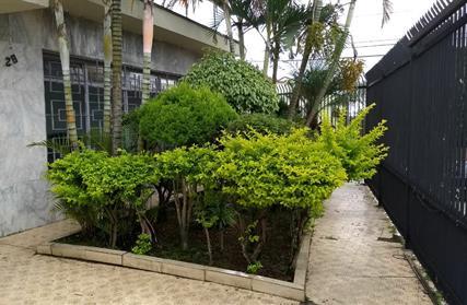 Casa Térrea para Alugar, Jardim Alto Pedroso