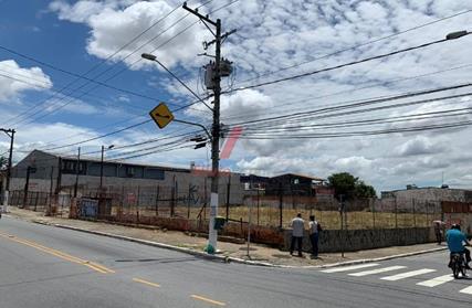 Terreno para Alugar, Vila Americana