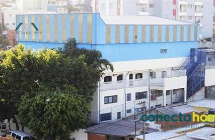 Ponto Comercial para Alugar, Vila Antonina