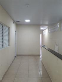 Apartamento para Alugar, Jardim IV Centenário