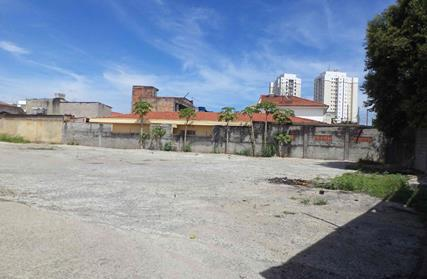 Terreno para Alugar, Parque Edu Chaves