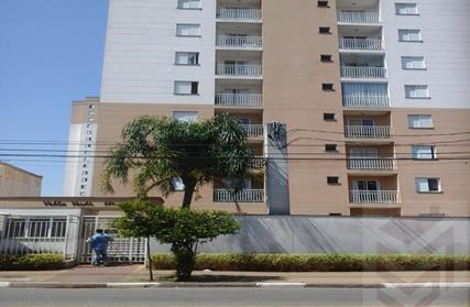 Apartamento para Alugar, Jardim Pereira Leite