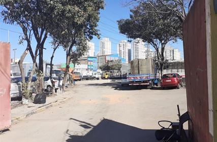 Terreno para Venda, Jardim Pereira Leite