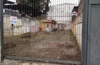 Terreno para Alugar, Vila Albertina