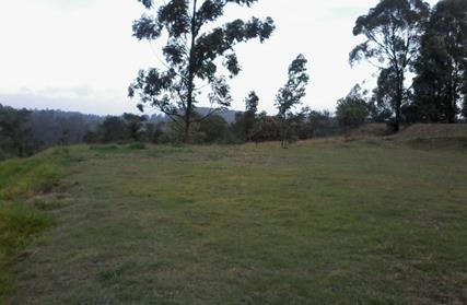 Terreno para Venda, Jardim Peri