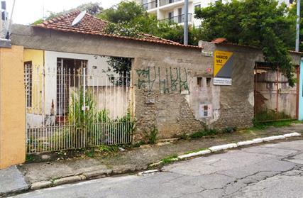 Terreno para Venda, Santa Teresinha