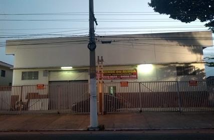 Galpão / Salão para Venda, Parque Edu Chaves