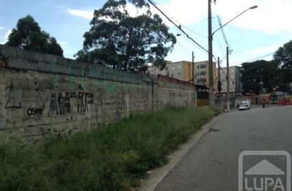 Terreno para Venda, Sítio Morro Grande