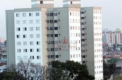 Apartamento para Alugar, Jardim Maristela