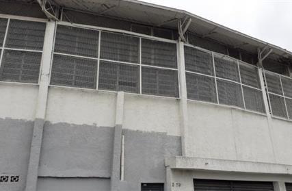 Galpão / Salão para Alugar, Vila Francos