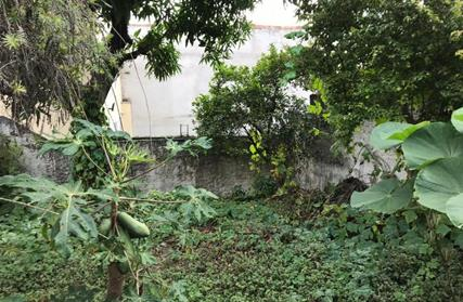 Terreno para Venda, Lauzane Paulista