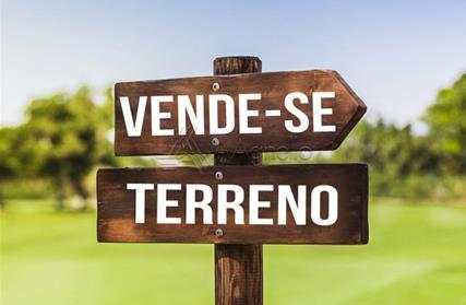 Terreno para Venda, Jardim Palmares (Zona Norte)