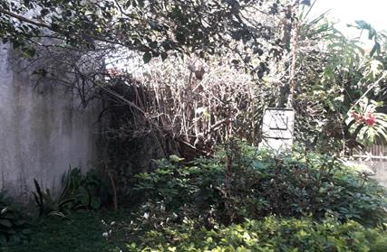 Terreno para Venda, Vila Constança