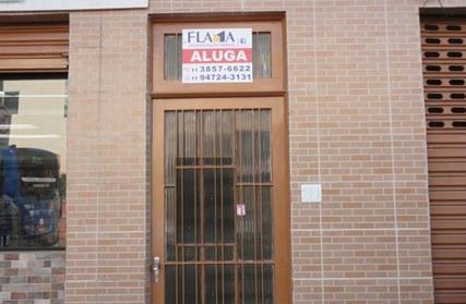 Apartamento para Alugar, Jardim Primavera