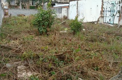 Terreno para Alugar, Vila Nova Mazzei